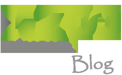 KZoo Music Blog